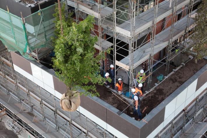 bosco-verticale-marco-garofalo-41