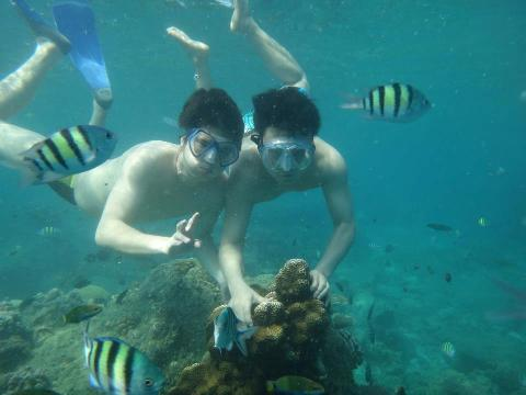 snorkeling-pulau-tidung