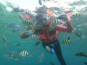 foto-underwater-snorkeling-pulau-tidung